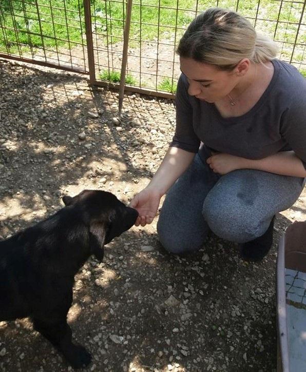 Bosnia And Herzegovina Sarajevo Yes Alumna Merima Yes 16 Feeding Dogs At The Dog Shelter In Gladno Polje On May 28Th 1