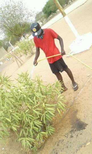 Senegal Green Spaces Mouhamedoune 3