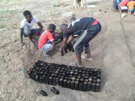 Senegal Green Spaces Mouhamedoune 2