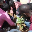 Senegal Dakar Gysd Tree Planting Activity Primary School Students Planting A Tree With The Environmental Education Center Staff Showing Them
