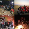 Wb Camping Collage
